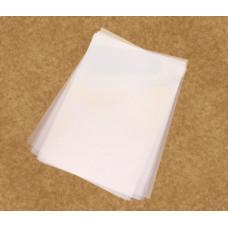 Poliester p/ jato de tinta  c/ 10 folhas - Agile